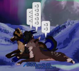 Zorro and Black (Wolfing)